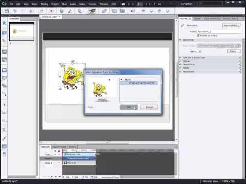 การแทรกภาพ Animation Gif (Captivate 6)