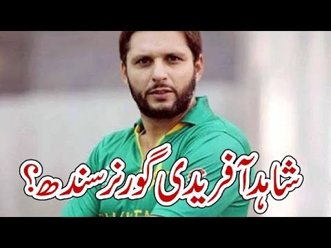 Shahid Afridi Governor Sindh ? | شاہد آفریدی گورنر سندھ؟