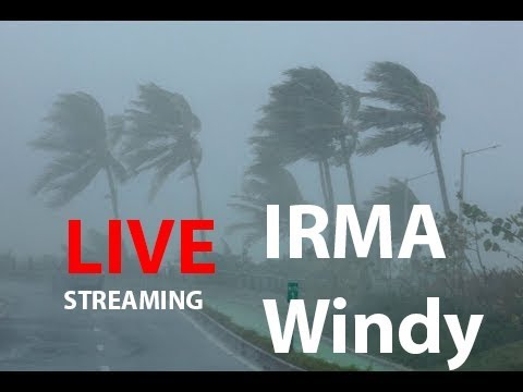 365 World News Now Streaming | Hurrucane Irma Live Stream