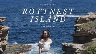 【????????Perth Vlog】看不厭的藍藍大海u0026尋找Quokka之旅 A day to Rottnest Island 澳洲西海岸小島 | March 2020 | Yoyokellee