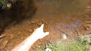 Check up of my favourite trout fishing creek