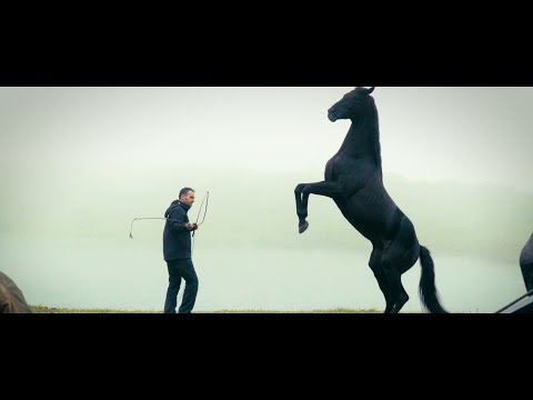 Şampiyon Kamera Arkası - Atlarla Çalışmak