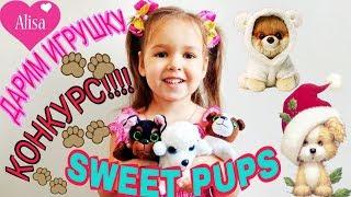 РОЗЫГРЫШ сладкого щенка Sweet Pups ПЕРЕДАЕМ ПРИВЕТЫ // Детский канал Little baby Алиса