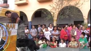 Exhibición día de las Madres en las juntas - Dogmanshow