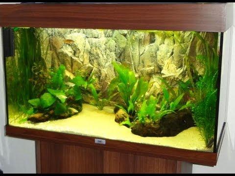 My Juwel Rio 125 Aquarium [1080p]