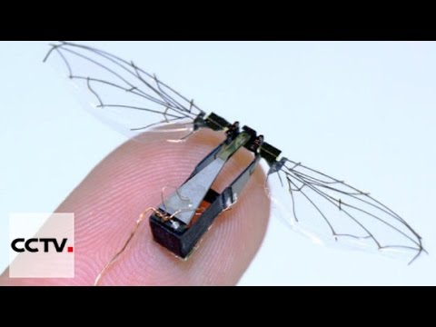Harvard engineers develop bee-sized drone