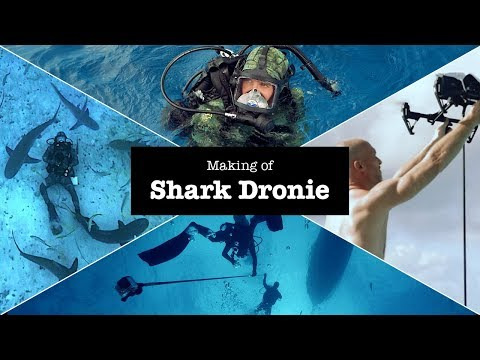The Shark Dronie – How we took a dronie while diving with sharks