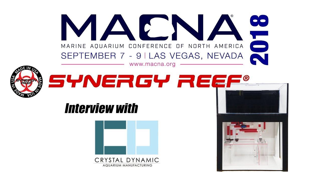 crystal dynamic aquarium manufacturer interview macna 2018 youtube