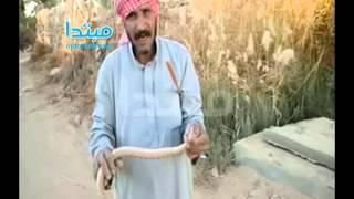 فيديو| أشهر صائد ثعابين فى الصحراء الغربية: «طبّاخ السم بيدوقه»