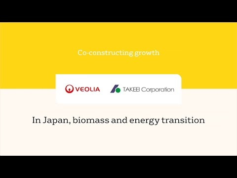 In Japan, Biomass in energy transition. TAKEEI / Veolia