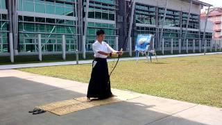 Heki Ryu Insai-Ha [Tranditional] Style Demonstration
