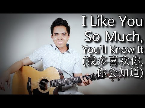 I Like You So Much, You'll Know It [我多喜欢你,你会知道] A Love So Beautiful OST (fingerstyle guitar cover)