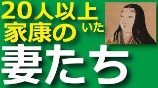 徳川家康の妻・側室ってどんなメンツだったの? という内容についてゆっ...