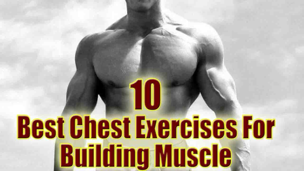 Top 10 Best Chest Exercise Muscle Building Youtube
