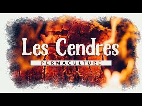 Le rôle des cendres dans son jardin permaculture !!!    #permaculture