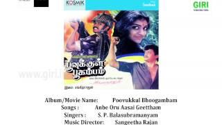 Poovukkul Bhoogambam (1988) Tamil Movie