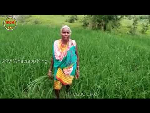 Dalkhai Sambalpuri Dance Whatsapp Funny Video||