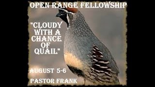 Cloudy With a Chance of Quail