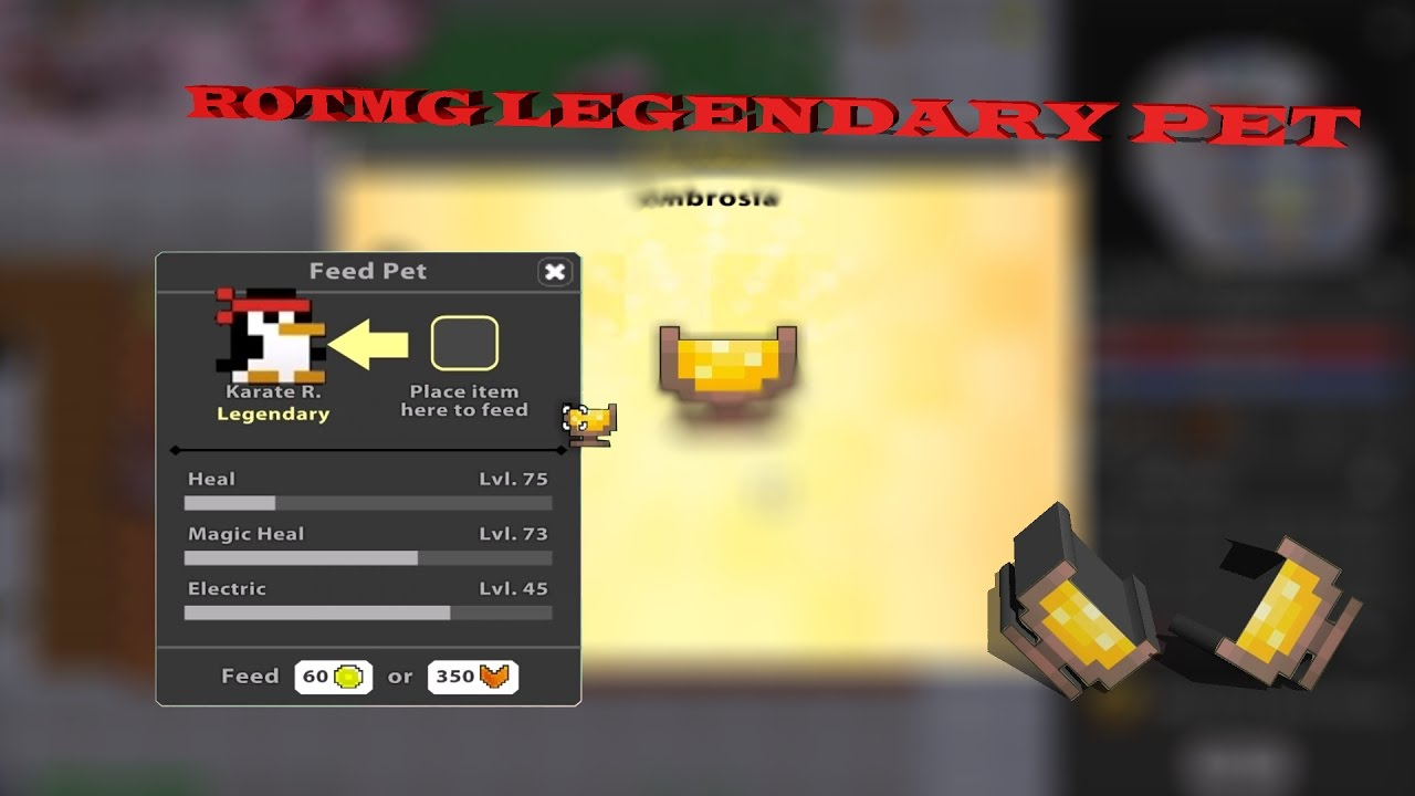 how to get a pet in rotmg