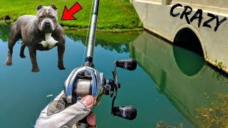 CRAZY DOG Tries To STEAL Our FISH while BASS Fishing!!!