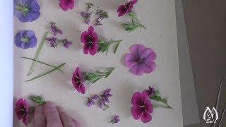 Flower Pressing Demonstration   Pressing Flowers Techniques   Tips   Tricks   Summer Flowers