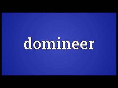 Header of domineer