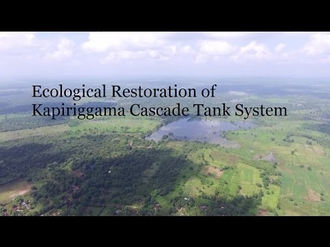 Ecological Restoration of Kapiriggama Cascade Tank System