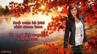 Andrea Berg -  Ich werde lächeln wenn du gehst - Instrumental
