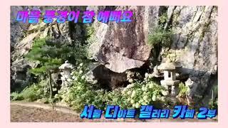 (마을 풍경이 참 예뻐요) 서울 디아트 갤러리 카페 2…