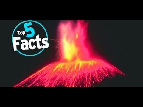 5 AMAZING FACTS ABOUT MUSIC