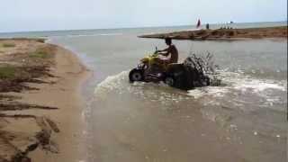 playa salinas eucaliptus