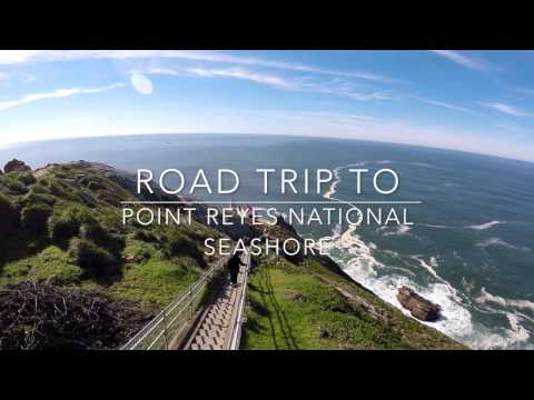Road Trip to Point Reyes | U-turn to the lighthouse