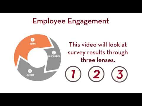 Employee Engagement: Interpreting Survey Results
