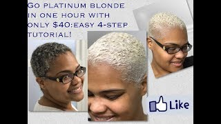 Go Platinum Blonde in only ONE hour with $40: Easy 4-Step Tutorial!