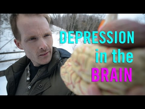Depression in the Brain: the Biology of Depression