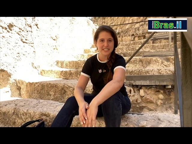 Aline - Torre de David