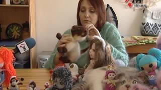 Почти как живые. Харьковчанка создает уникальные игрушки в виде котов - 01.03.2017