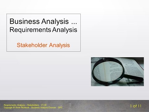 Bite Size BA - Requirements Analysis - Stakeholder Analysis