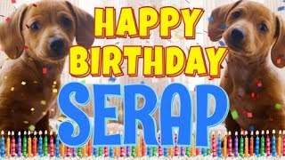 Happy Birthday Serap ( Funny Talking Dogs ) What Is Free On My Birthday