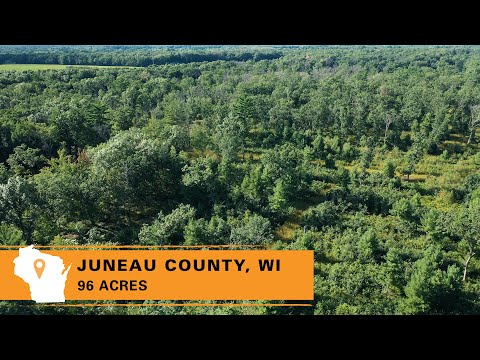 Affordable Wooded Hunting Property For Sale In Juneau County, WI (96 Acres)