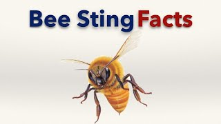 Bee Sting Facts