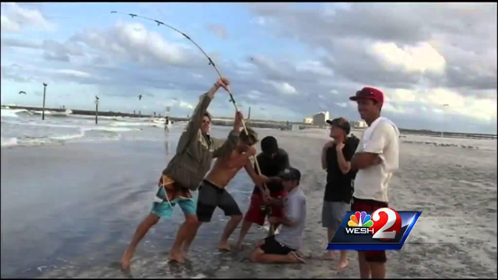 Purple Flag Returns On Beach As Bait Fish Crowd Ocean