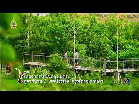 ทุ่งแสงตะวัน | ตอน โครงการป่าในกรุง ปตท. | 18-06-59 | TV3 Official
