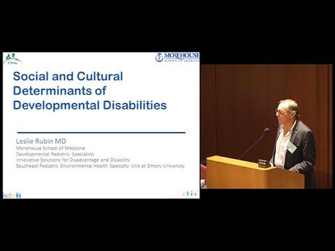 Social and Cultural Determinants of Developmental Disabilities