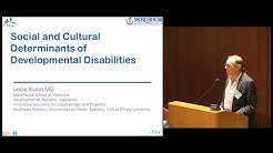 Social and Cultural Determinants of Developmental Disabilities