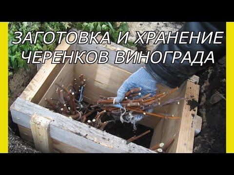 Объявления Феодосии: работа в Феодосии - газета Кафа