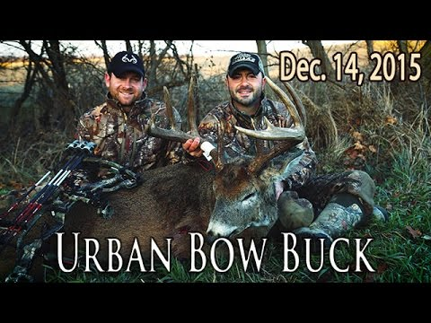 Midwest Whitetail | Urban Deer Hunting