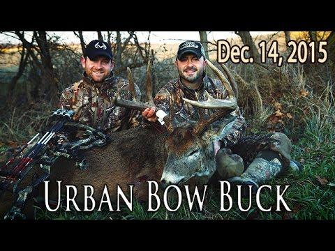 Midwest Whitetail | Urban Deer Hunting