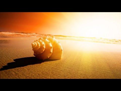 [Kygo Style] HAEVN - Bright Lights (Sam Feldt Remix)