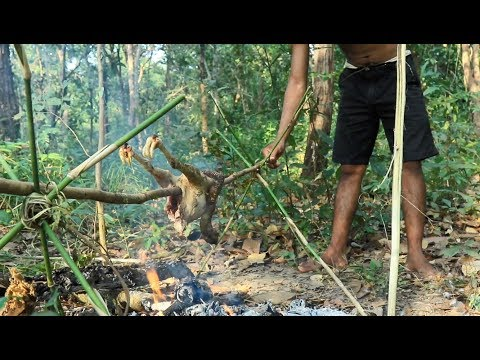 Primitive Solution,  Make a trap to catch wild chicken and cooking in the forest